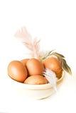 φτερό αυγών Στοκ φωτογραφία με δικαίωμα ελεύθερης χρήσης