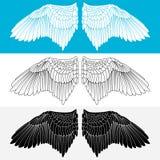 Φτερό. Διανυσματική απεικόνιση Στοκ εικόνες με δικαίωμα ελεύθερης χρήσης