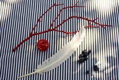 Φτερό και πέτρες και μήλο Στοκ φωτογραφία με δικαίωμα ελεύθερης χρήσης
