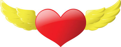 Φτερό καρδιών Στοκ φωτογραφία με δικαίωμα ελεύθερης χρήσης