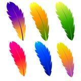 Φτερό με το διαφορετικό χρώμα επίσης corel σύρετε το διάνυσμα απεικόνισης Στοκ φωτογραφίες με δικαίωμα ελεύθερης χρήσης