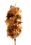 Φτερό που απομονώνεται ξύλινο στο λευκό Στοκ εικόνα με δικαίωμα ελεύθερης χρήσης