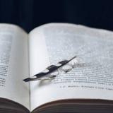 Φτερό πουλιών στενό σε επάνω βιβλίων, φιλτραρισμένος Στοκ εικόνα με δικαίωμα ελεύθερης χρήσης