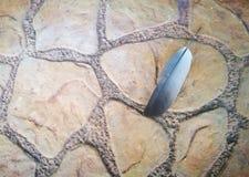 Φτερό στο καφετί πάτωμα σύστασης πετρών Στοκ φωτογραφία με δικαίωμα ελεύθερης χρήσης