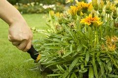 φτυάρι κήπων Στοκ φωτογραφία με δικαίωμα ελεύθερης χρήσης