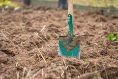 Φτυάρι που καρφώνεται στο χώμα κήπων Στοκ εικόνες με δικαίωμα ελεύθερης χρήσης