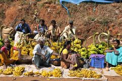 Φυλετική αγορά φρούτων της κοιλάδας Araku, Vishakhapattnam, Ινδία στοκ φωτογραφία με δικαίωμα ελεύθερης χρήσης