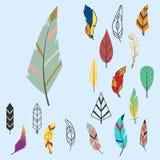 Φυλετικό επίπεδο φτερών διαφορετικό ύφους πουλιών εκλεκτής ποιότητας ζωηρόχρωμο εθνικό συρμένο χέρι καλάμι φύσης σχεδίων στοιχείω Στοκ Εικόνες