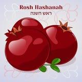 φυσήγματος shofar έτος rosh αγοριών hashanah εβραϊκό νέο Εβραϊκή νέα ευχετήρια κάρτα έτους με το ρόδι στο ύφος κινούμενων σχεδίων Στοκ Εικόνα