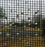 Φυσαλίδες στο παράθυρο Στοκ Φωτογραφίες