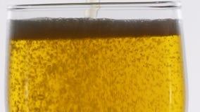 Φυσαλίδες που επιπλέουν στην μπύρα φιλμ μικρού μήκους