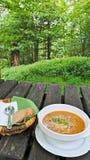 φυσικά λαχανικά συμβολοσειράς τροφίμων κουνουπιδιών καρότων φασολιών Στοκ εικόνες με δικαίωμα ελεύθερης χρήσης