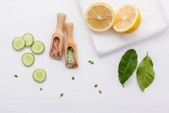 Φυσικά βοτανικά προϊόντα φροντίδας δέρματος Τοπ αγγούρι συστατικών άποψης Στοκ Φωτογραφία