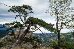 Φυσικά βουνά 4 Στοκ εικόνες με δικαίωμα ελεύθερης χρήσης