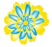 Φυσικά λουλούδια Στοκ Εικόνες