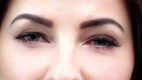Φυσικά μάτια makeup κλείστε επάνω κίνηση αργή απόθεμα βίντεο