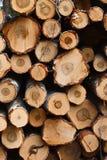 Φυσικά ξύλινα κούτσουρα που κόβονται και που συσσωρεύονται στο σωρό Στοκ φωτογραφία με δικαίωμα ελεύθερης χρήσης