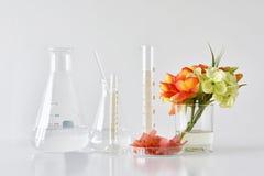 Φυσικά οργανικά και επιστημονικά γυαλικά, εναλλακτική ιατρική χορταριών, φυσικά προϊόντα ομορφιάς φροντίδας δέρματος Στοκ Φωτογραφία