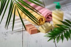 Φυσικά οργανικά προϊόντα λουτρών πετσέτα, σαπούνι, μπουκάλι σαμπουάν και λ Στοκ Εικόνα