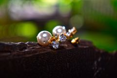 Φυσικά σκουλαρίκια μαργαριταριών όμορφα και ακριβά ως κόσμημα για τις κυρίες στοκ εικόνα με δικαίωμα ελεύθερης χρήσης