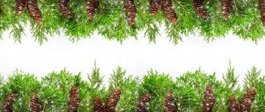 Φυσικά σύνορα Χριστουγέννων των κωνοφόρων κλάδων και των κώνων και του Δρ Στοκ Φωτογραφία