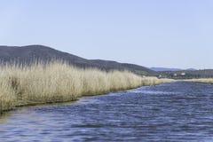 Φυσικά τοπία επιφύλαξης Botrona Diaccia Στοκ Εικόνες