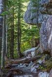 Φυσικά τοπία Καναδάς πεζοπορίας θερινών βουνών Στοκ Φωτογραφίες