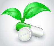 Φυσικά φάρμακα διανυσματική απεικόνιση