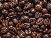 Φυσικά φασόλια καφέ αρώματος Στοκ εικόνες με δικαίωμα ελεύθερης χρήσης