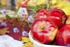 Φυσικά φρέσκα μήλα φθινοπώρου Στοκ φωτογραφία με δικαίωμα ελεύθερης χρήσης