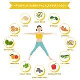 Φυσικά detox και καθαρίστε τα τρόφιμα, γραφικά επίπεδα τρόφιμα πληροφοριών Στοκ εικόνα με δικαίωμα ελεύθερης χρήσης