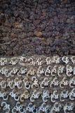 Φυσικές και τεχνητές ομορφιές, ο κήπος βράχου Στοκ φωτογραφίες με δικαίωμα ελεύθερης χρήσης
