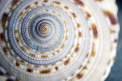 φυσικές πέτρες SPA γάλακτος μασάζ στοιχείων σωμάτων ομορφιάς Στοκ εικόνα με δικαίωμα ελεύθερης χρήσης
