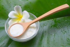 Φυσικές SPA μασκών προσώπου επεξεργασίες γιαουρτιού για το δέρμα στοκ εικόνα