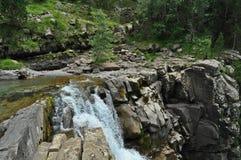 Φυσική άποψη σχετικά με τον καταρράκτη στο δάσος Στοκ φωτογραφία με δικαίωμα ελεύθερης χρήσης