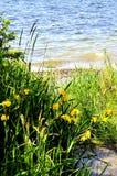Φυσική άποψη τοπίων Στοκ φωτογραφίες με δικαίωμα ελεύθερης χρήσης