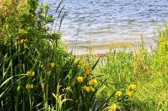 Φυσική άποψη τοπίων Στοκ εικόνες με δικαίωμα ελεύθερης χρήσης