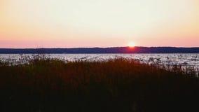 Φυσική άποψη του ηλιοβασιλέματος πέρα από τον της Γεωργίας κόλπο στην περιοχή Great Lakes του Οντάριο, Καναδάς απόθεμα βίντεο