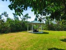 Φυσική άποψη του πάγκου και ενός πάρκου στη Νάπολη, Φλώριδα στοκ εικόνες