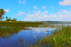 Φυσική άποψη του ποταμού κάτω από το μπλε ουρανό με τα σύννεφα/γενέθλιος, Βραζιλία Στοκ φωτογραφία με δικαίωμα ελεύθερης χρήσης