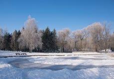 Φυσική άποψη του χειμερινού πάρκου Στοκ φωτογραφία με δικαίωμα ελεύθερης χρήσης