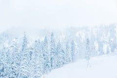 Φυσική άποψη των μικρών ανθρώπων που περπατούν στο βουνό χιονιού, Ουάσιγκτον, Στοκ Εικόνες