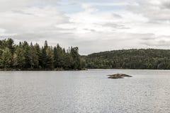 Φυσική άποψη των νησιών δέντρων λιμνών και πεύκων με τα πουλιά σε τους Algonquin στο επαρχιακό εθνικό πάρκο Οντάριο Καναδάς Στοκ φωτογραφία με δικαίωμα ελεύθερης χρήσης