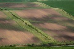 Φυσική άποψη των πράσινων και καφετιών τομέων στην όμορφη κυματιστή επαρχία στοκ φωτογραφία