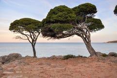 Φυσική άποψη λυκόφατος του σημείου αποθηκών Στοκ Φωτογραφίες