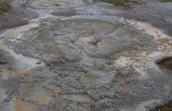 Φυσική άποψη Geyser Anemone Στοκ εικόνα με δικαίωμα ελεύθερης χρήσης