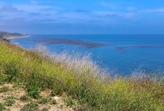 Φυσική ακτή Καλιφόρνιας κοντά σε Santa Barbara Στοκ εικόνες με δικαίωμα ελεύθερης χρήσης