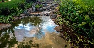 Φυσική βλάστηση Στοκ εικόνα με δικαίωμα ελεύθερης χρήσης