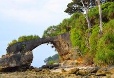 Φυσική γέφυρα κοραλλιών του Howrah με το Hill και την πρασινάδα, παραλία Laxmanpur, νησί του Neil, Andaman, Ινδία στοκ εικόνες