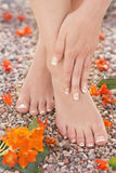 Φυσική γαλλική φύση μασάζ πόνου αστραγάλων ποδιών μανικιούρ Pedicure Στοκ Φωτογραφία